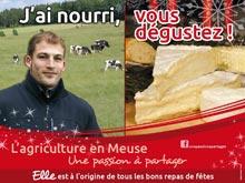 Campagne Décembre 2012