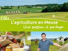 Campagne Juillet 2012